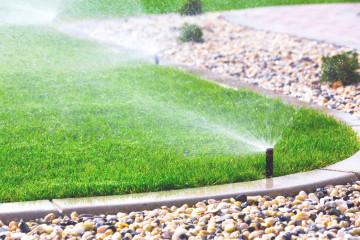 Irrigation & Tree Work