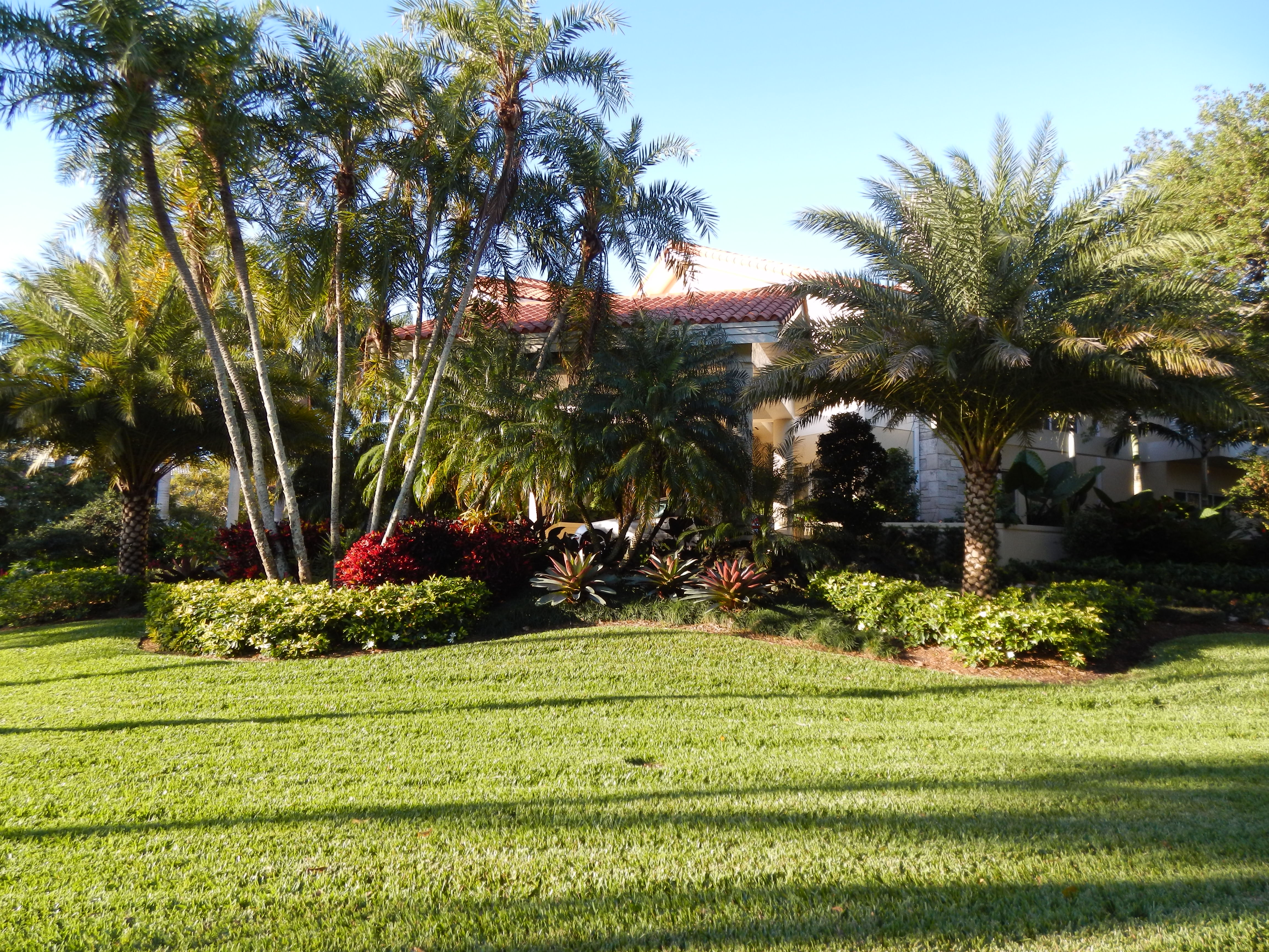 green landscaping in Miami