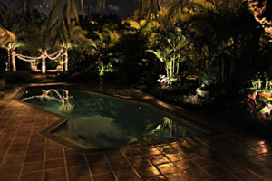 Professional landscape lighting in Coral Gables