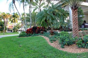 Residential Planting Miami