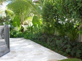 Plant Maintenance Coral Gables