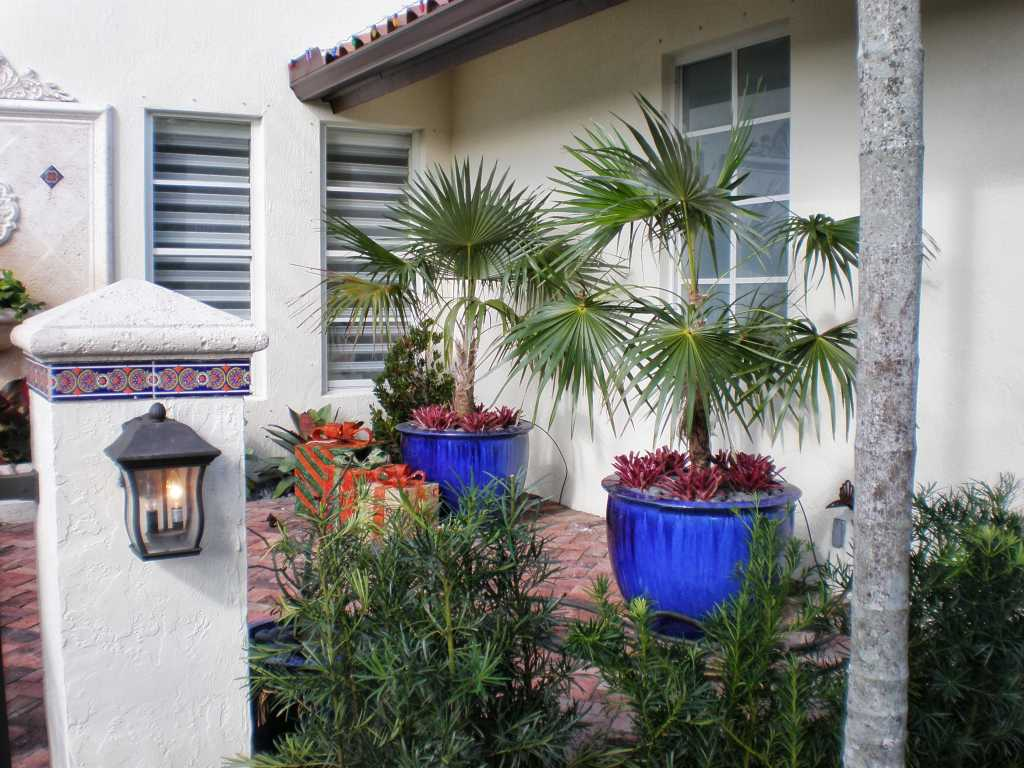 Modern Topical Landscape Design Landscaping In Miami
