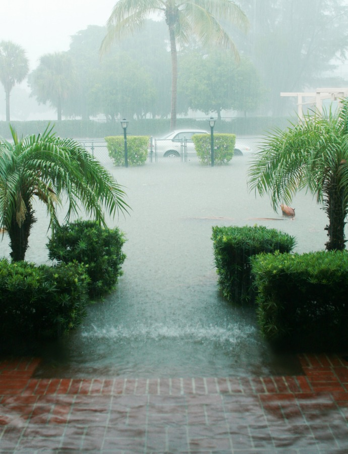 Lawn Care Tips for After a Hurricane