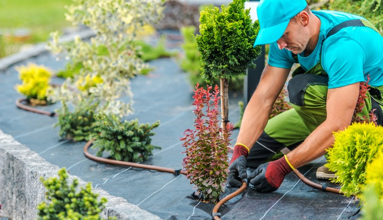 Irrigation Systems in South Florida
