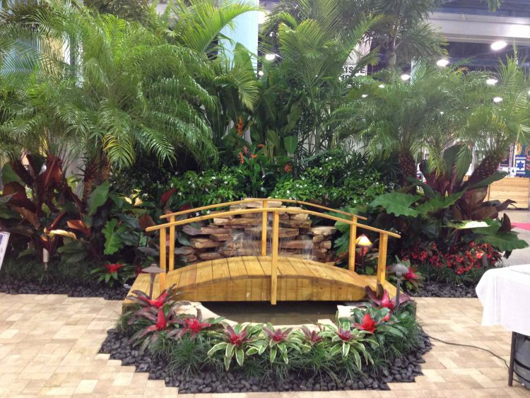 Tropical Water Features