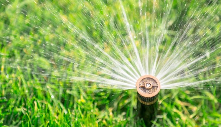Irrigation System Design in Miami